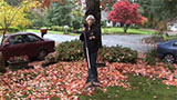 Raking Leaves for Mulch
